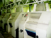 Мельницы и мельничное оборудование для мукомольной промышленности.