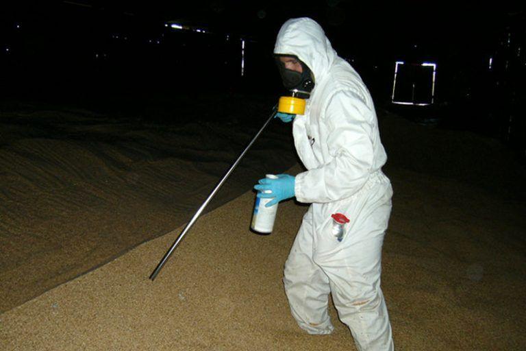 Обеззараживание зерна на элеваторах транспортер т5 в минске